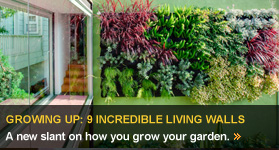 Growing Up: 10 Incredible Living Walls Img
